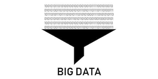 Big Data in Biomedical Research