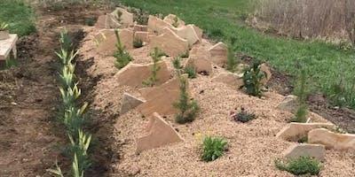 Crevice Gardening