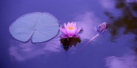Mindfulness Meditation boletos