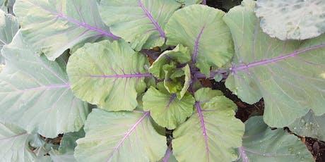 Garden Educator Training Series Part II (Manatee County) tickets