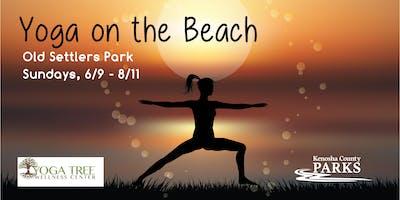 Kenosha County Go365 Yoga on the Beach