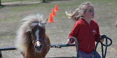 Horse & Pony Camp @ Spirit's Promise Equine Rescue | Summer Camp