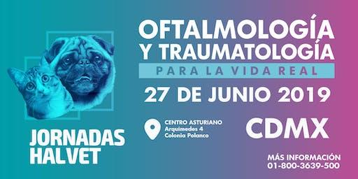 Jornadas Halvet Ciudad de México 2019