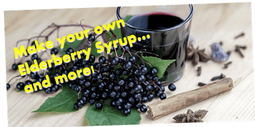 Make Your Own Elderberry Syrup... and more