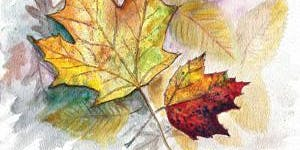 Fall Into Watercolors with ShawnaLee