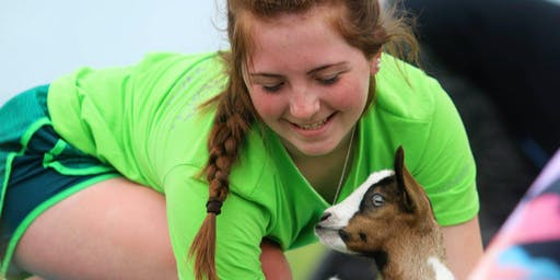 Baby Goat Yoga at Victory Hill Farm, Scottsbluff