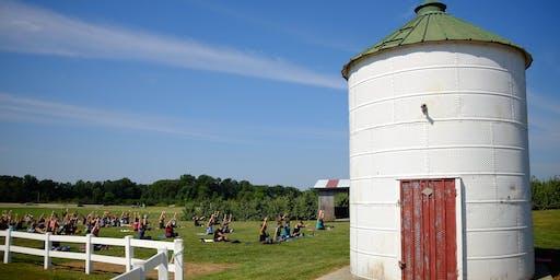 Yoga + Blackberries at Eckert's Family Farms