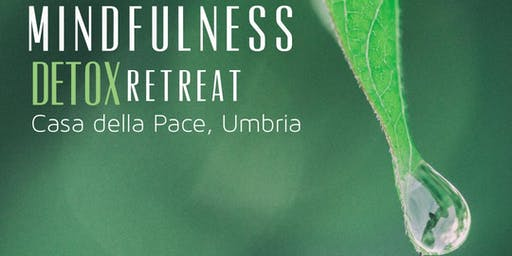 Mindfulness Detox Retreat