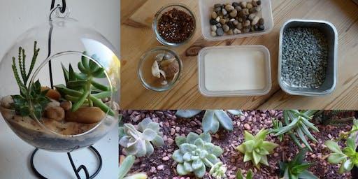 Terrarium Making Workshop afternoon Didsbury