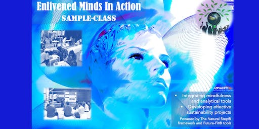 Enlivened Minds In Action