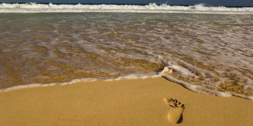 Step In and Speak Out for the Great Lakes: Lake Michigan