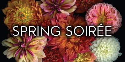 2019 Alzheimer's Association Spring Soirée Donation Page