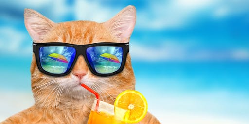 Summer social pub quiz