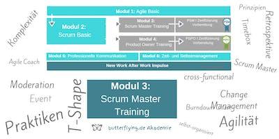 MODUL 3: Srum Master Training | butterflying.de Akademie