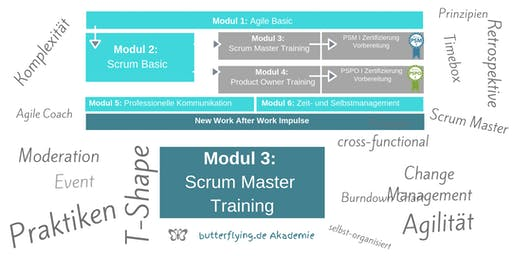 MODUL 3: Scrum Master Training | butterflying.de Akademie