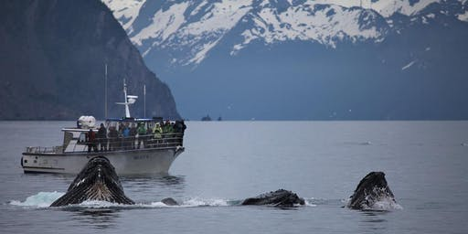 Responsible Whale Watching Guides Course