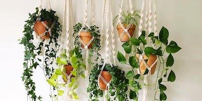Macrame Plant Hanger Workshop - Beginner friendly!