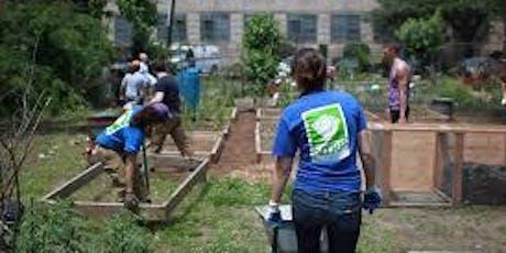 Forest Crew Volunteer Day tickets
