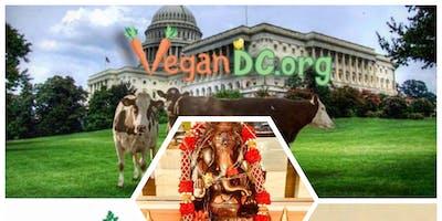 May VEGAN Indian Buffet | ALL You CAN EAT :)