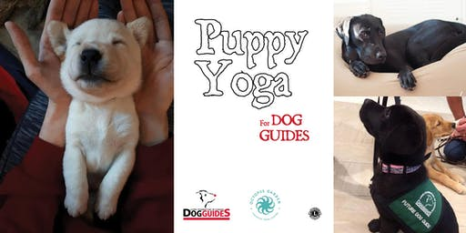 Puppy Yoga for Dog Guides!