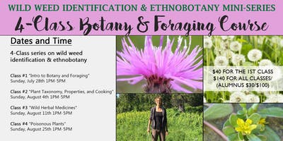 Wild Weeds Botany & Foraging 4-Class Course