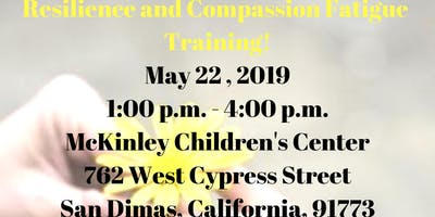 Resilience and Compassion Fatigue Training for Mental Health Professionals!