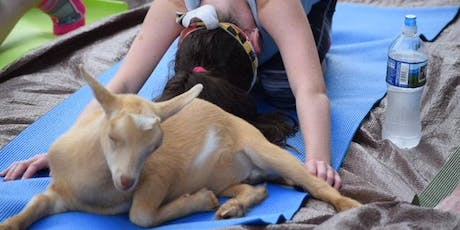 Sunset Yoga With Goats Fri. July 26th at 7:30pm tickets