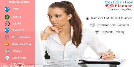Project Management Professional (PMP) 4-days Classroom in San Jose tickets