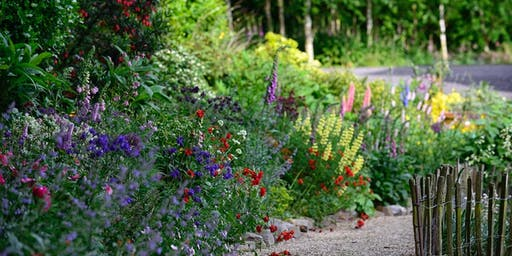 Summer Lunch and Plant Sale with The Insomniac Gardener, Slane, Saturday 22 June 12pm  - 4pm