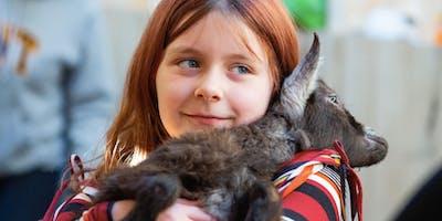 Animal Friends Farm Camp
