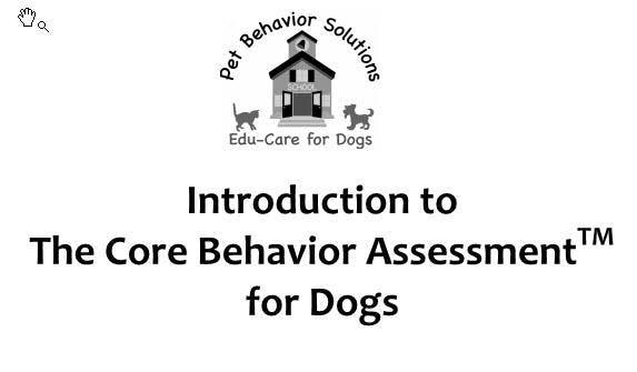 Intro to Dog CORE Behavior Class