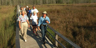 Field Tripping with Dr. Marty Main - Caladesi Island State Park