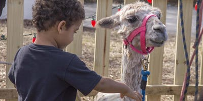 Children's Day Festival - Petting Zoo, Bouncy House, Face Painting and more
