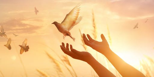 Cultivating Inner Freedom - a Saturday Morning Retreat