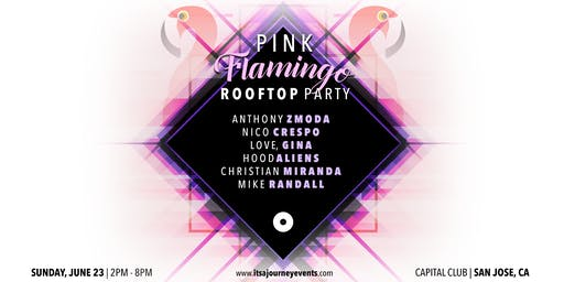 Pink Flamingo Rooftop Party