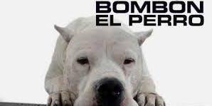 "Screening of ""Bombón: El perro"" (Bombón: The Dog, Argentina, 2004)by Carlos Sorín.(English subtitles)"