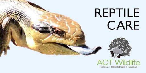 Reptile Care