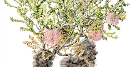 Symposium - Framing Flora: Artists and the Science of Botany tickets