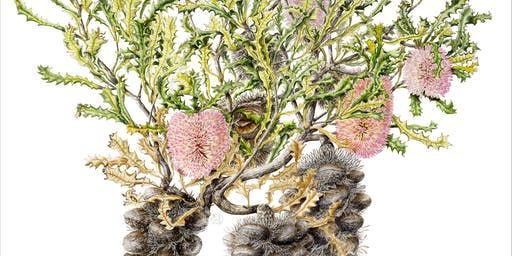 Symposium - Framing Flora: Artists and the Science of Botany