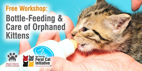 Workshop: Bottle-Feeding & Care of Orphaned Kittens tickets