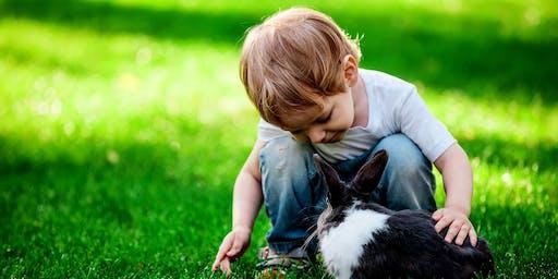 Bunny Calm at Stone Bridge Farm- Fathers Day Special
