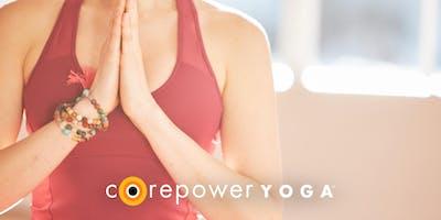 Free Yoga Fundamentals Workshop