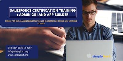 Salesforce Admin 201 & App Builder Certification Training in Charleston, SC