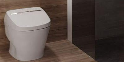 Everything You Wanted to Know About Toilets But Were Too Embarrassed to Ask!