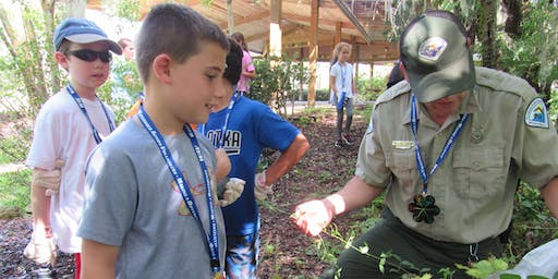 ECO Adventure Days! 6th- 8th Grade Summer Camp