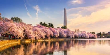 MindTravel SilentWalk in Washington D.C. through the Tidal Basin tickets