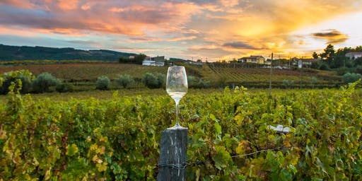Wines of the World: Sonoma