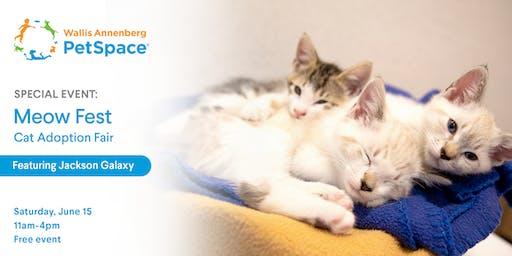 Meow Fest: Cat Adoption Fair