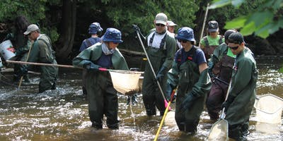 Electrofishing Volunteer Day- July 17