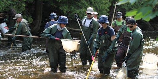 Electrofishing Volunteer Day-August 14